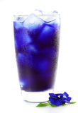 Butterfly pea juice for drink Stock Image