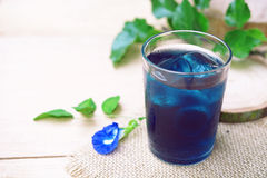 Butterfly pea juice with ice. Pea, thailand, table, soft, natural, coloring, tropical, green, floral, white, beverage, flower, drink, leaf, botanic, vine Stock Photography