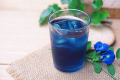 Butterfly pea juice with ice. Pea, thailand, table, soft, natural, coloring, tropical, green, floral, white, beverage, flower, drink, leaf, botanic, vine Stock Photo