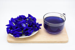 Butterfly pea juice with pile of pea flower on wooden plate on w. Hite background Stock Photo