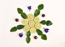 Butterfly pea, Soap Nut Tree. and Kaffir lime, Leech lime, Mauritius papeda Stock Photography
