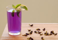 Butterfly Pea Tea Royalty Free Stock Photos