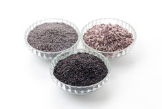 Butterfly peas rice ,berry rice and black sticky gaba rice Royalty Free Stock Photo