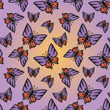 Butterfly pink-purple seamless texture. Butterfly with pink-purple wings against the sunset sky. Seamless texture Stock Photos