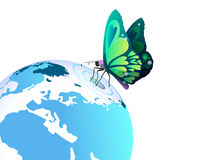 Butterfly on earth Royalty Free Stock Images