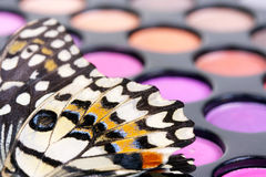 Butterfly on professional make up eye shadows Royalty Free Stock Photography
