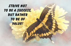 Butterfly quote Stock Images