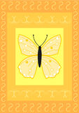 Butterfly on rectangles with flourish pattern Stock Images