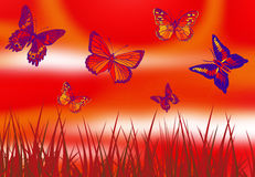 Butterfly in red Royalty Free Stock Images