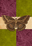 Butterfly on Rich Colored Background Stock Photography