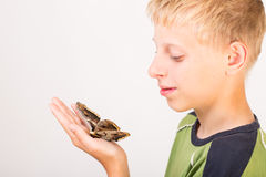 Butterfly Saturnia on child's hand Royalty Free Stock Photo
