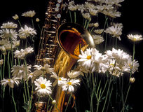 Butterfly and Sax in the Daisy. Spring in the garden where daisies bloom and the yellow swallowtail butterfly nests on a tenor saxophone Stock Photography