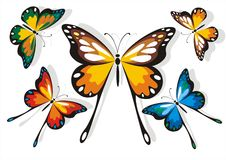 Butterfly school set Royalty Free Stock Photo