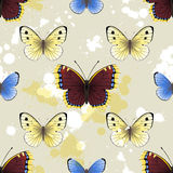 Butterfly seamless Stock Photos