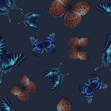 Butterfly seamless 01 black Stock Image