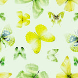 Butterfly seamless 04 green. Seamless pattern from butterflies, vector illustration, clip-art Royalty Free Illustration