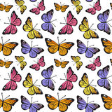 Butterfly seamless hand drawn pattern Stock Images
