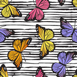 Butterfly seamless hand drawn pattern on doodle line background. Vector Royalty Free Stock Images