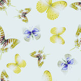 Butterfly seamless 01 lith Stock Images