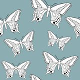 Butterfly seamless patter