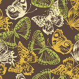 Butterfly seamless pattern Stock Photos