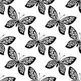 Butterfly seamless pattern Stock Photos