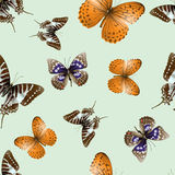 Butterfly seamless 01. Seamless pattern from butterflies, illustration, clip-art royalty free illustration