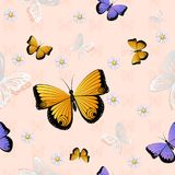 Butterfly seamless pattern Stock Images