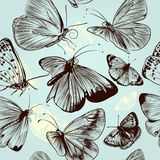 Butterfly seamless pattern with engraved insects in vintage styl Royalty Free Stock Images