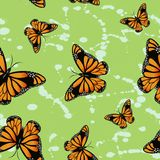 Butterfly seamless wallpapers Royalty Free Stock Image