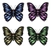 Butterfly Set Stock Photo