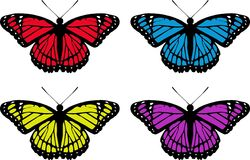 Butterfly set Royalty Free Stock Photo