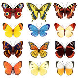 Butterfly set. Vector illustration - butterfly icon set Stock Images