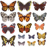 Butterfly set big Stock Photography