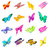 Butterfly set icons. In isometric 3d style isolated on white background Stock Photos