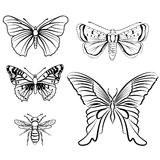 Butterfly set. Insect doodle sketch collection. Stock Photo