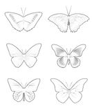 Butterfly Set shape Stock Photography