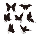 Butterfly silhouet Royalty Free Stock Photos