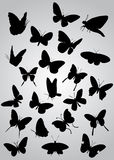 Butterfly silhouette Stock Photos
