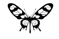 Butterfly silhouette Stock Photography