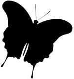 Butterfly Silhouette. Beautiful illustration of a Butterfly Silhouette, isolated Stock Photography
