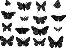 Butterfly silhouettes Royalty Free Stock Photography