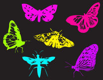 Butterfly silhouettes Stock Photography