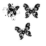 Butterfly Silhouettes Stock Photo