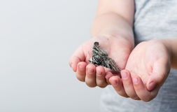 A butterfly of silkmoth in a child's hands - Lymantria dispar Royalty Free Stock Photo