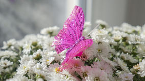 Butterfly is sitting on a bouquet of white flowers Stock Photo
