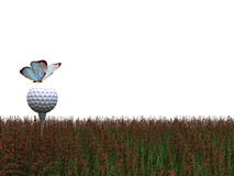 Butterfly sitting on a Golf Ball on the green grass Stock Image