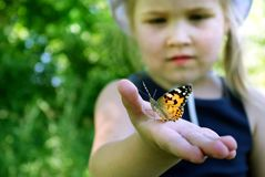 Butterfly sitting on the hand of a child. Child with a butterfly. Butterfly painted lady on the hand of a little girl. Selective f. Butterfly sitting on the hand royalty free stock photos