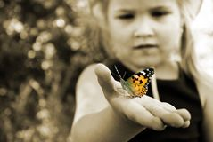 Butterfly sitting on the hand of a child. Child with a butterfly. Butterfly painted lady on the hand of a little girl. Selective f. Butterfly sitting on the hand royalty free stock images