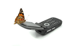 Butterfly sitting on a mobile phone Stock Photography